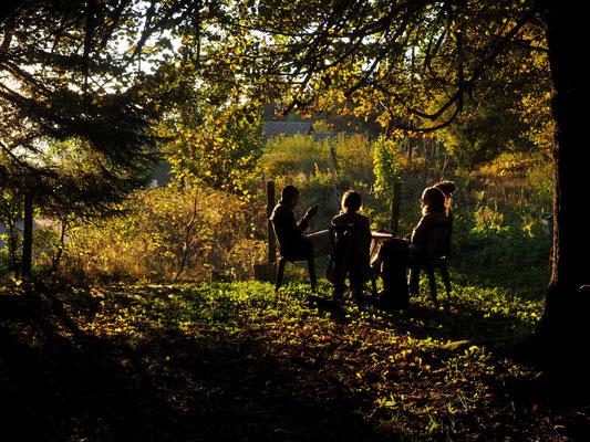 Derniers rayons de soleil, ils ont trouvé l'emplacement de rêve...