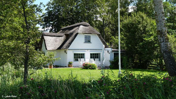 Gemeinde Brodersby - Goltoft / Strohdachhaus am Badestrand im Ortsteil Burg