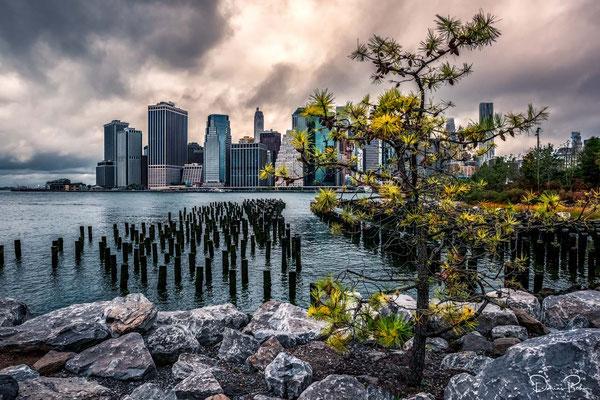 NYC Impressionen