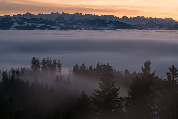 Nebelwelle bei Orn am Bachtel
