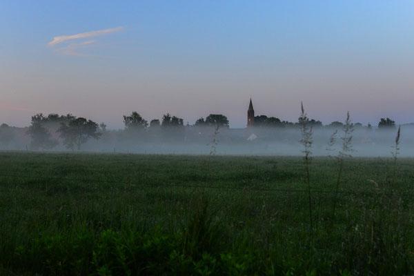 Früher Morgen in Brodowin