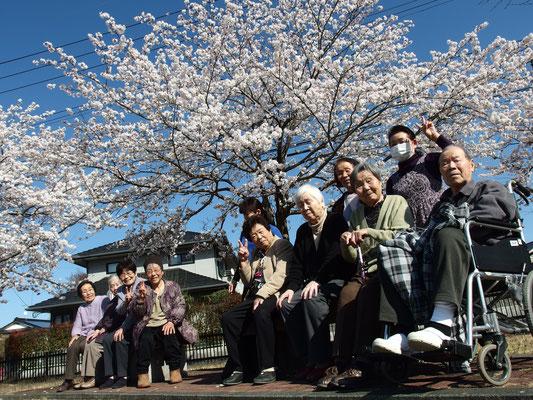 桜が咲いたらみんなでお出掛け♪