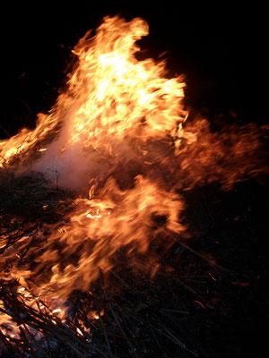 Michael Koch: eternal fire, 2017, Lambdaprint, Diasec