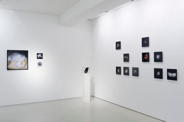 Collection, Photo Weekend Düsseldorf, Galerie Voss 2013