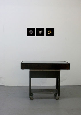 Michael Koch: Visindi, 2016, mixed media installation