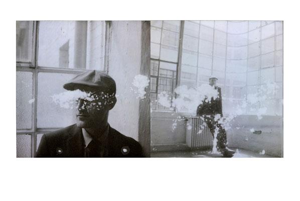 Michael Koch: Steen - Hill Myna, 2014, Polaroids
