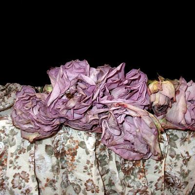 Michael Koch: Vanity, 2014, C-Print, Diase