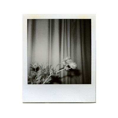 Michael Koch: Membra 1, 1999, Polaroid