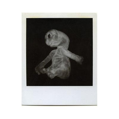 Michael Koch: E.T. 2001, Polaroid