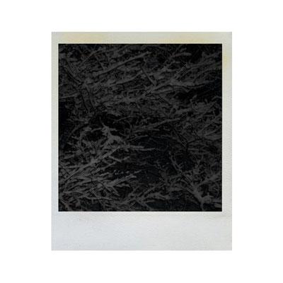 Michael Koch: Snow, 2008, Polaroid