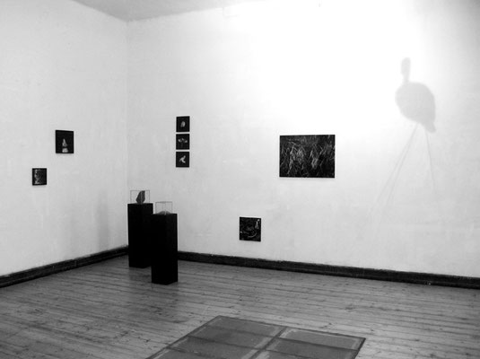 chronoform#2 T I E R, Olga - Raum für Kunst, Wuppertal 2014