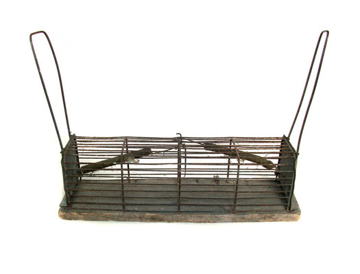 Michael Koch: tender trap, 2012, mixed media, 26cm x 36cm x 10cm