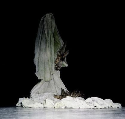 Michael Koch: Cantico delle Creature, 2014, Installation, C-Print
