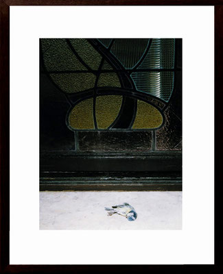 Michael Koch: Tiffany, 2002, C-Print, framed, from: arvo