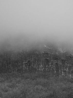 Michael Koch: Fog Mountains, 2016, Lambdaprint, Diasec