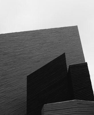 Michael Koch: resurrection, 2016, Lambdaprint, Diasec