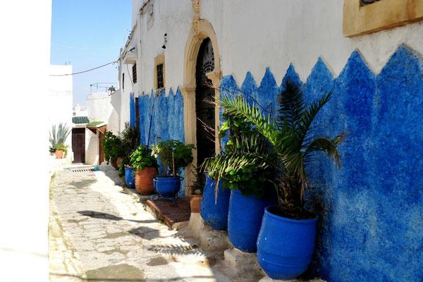 Vieux FES-Maroc