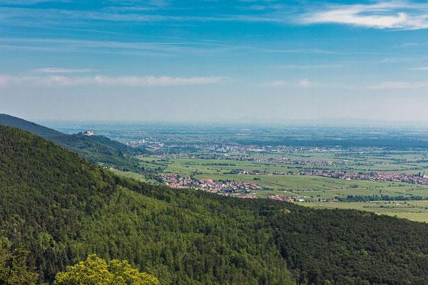 Blick in Richtung Hambacher Schloss