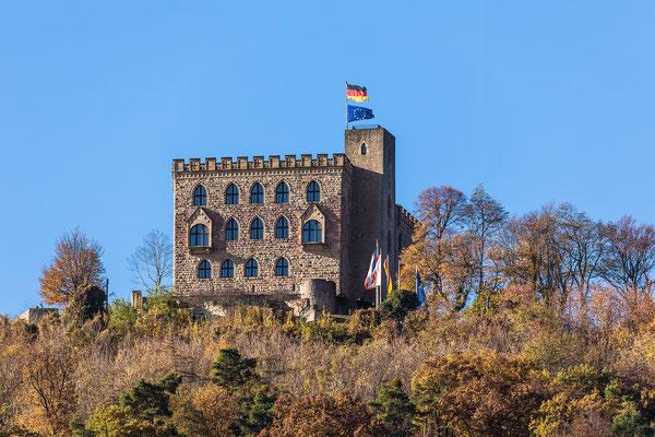 Herbst am Hambacher Schloss