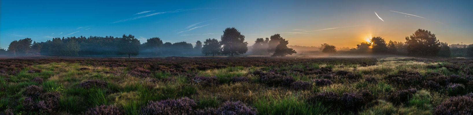 Sonnenaufgang in der Mehlinger Heide