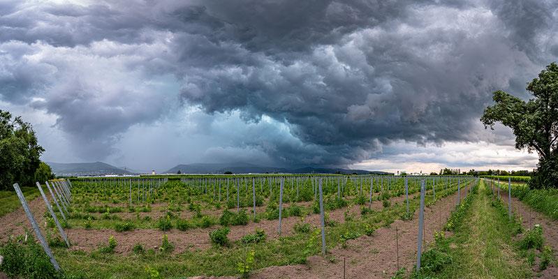 Gewitterstimmung bei Neustadt