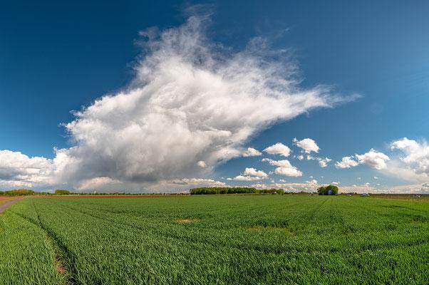 Gewitterwolken bei Lachen-Speyerdorf