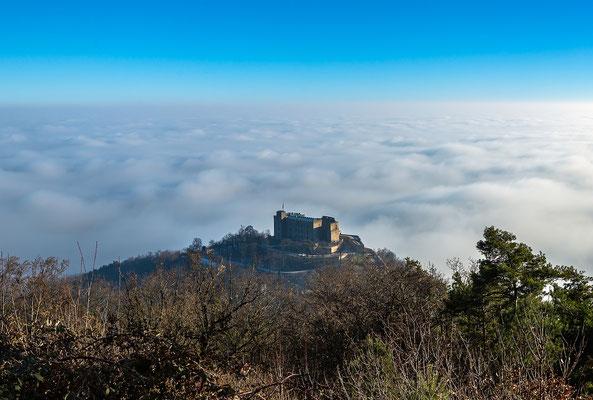 Hambacher Schloss über dem Nebel,  40 x 60cm, Forex, Hängung: Aluminiumschiene, 80 €