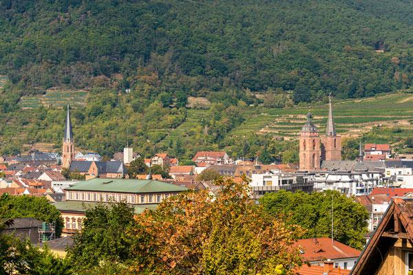Stadtpanorama von Neustadt