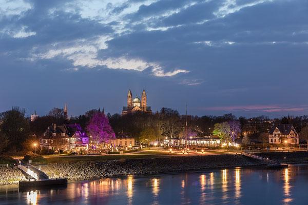 Abendstimmung in Speyer am Rhein
