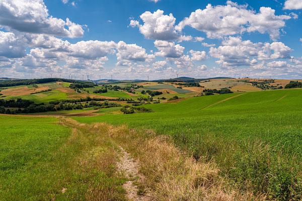 Landschaft bei Schallodenbach