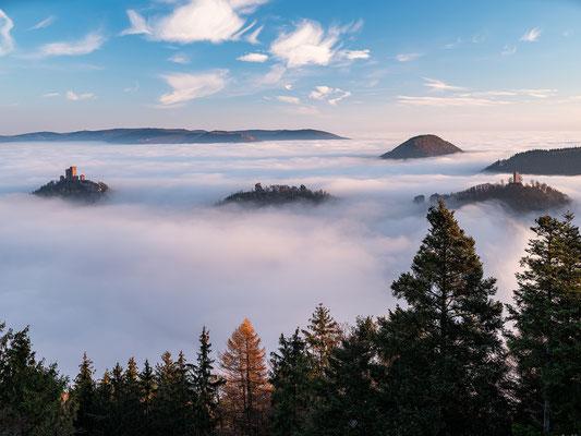 Nebelmorgen am Rehbergturm
