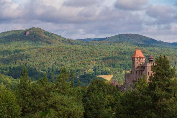 """Burg Berwartstein und links der Felsen """"Buhlsteinpfeiler"""""""