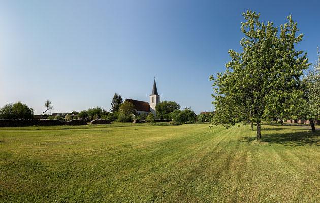 Am Ortsrand von Scheibenhardt