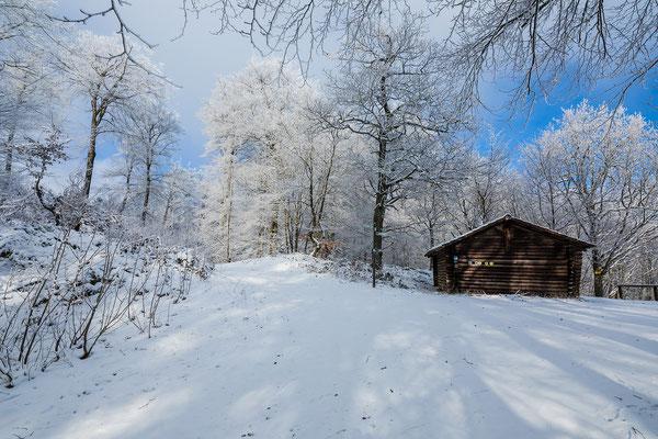 Verschneiter Wald am Hirtenfels
