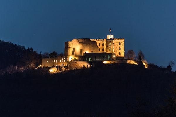 Blick aufs Hambacher Schloss