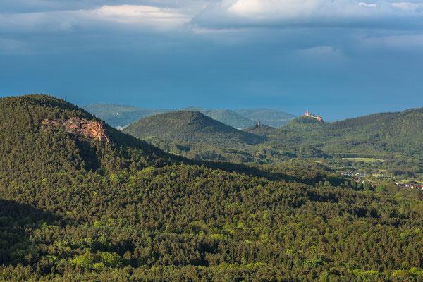 Blick über den Pfälzerwald in Richtung Trifels