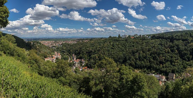 Blick vom Kloster Limburg über Bad Dürkheim
