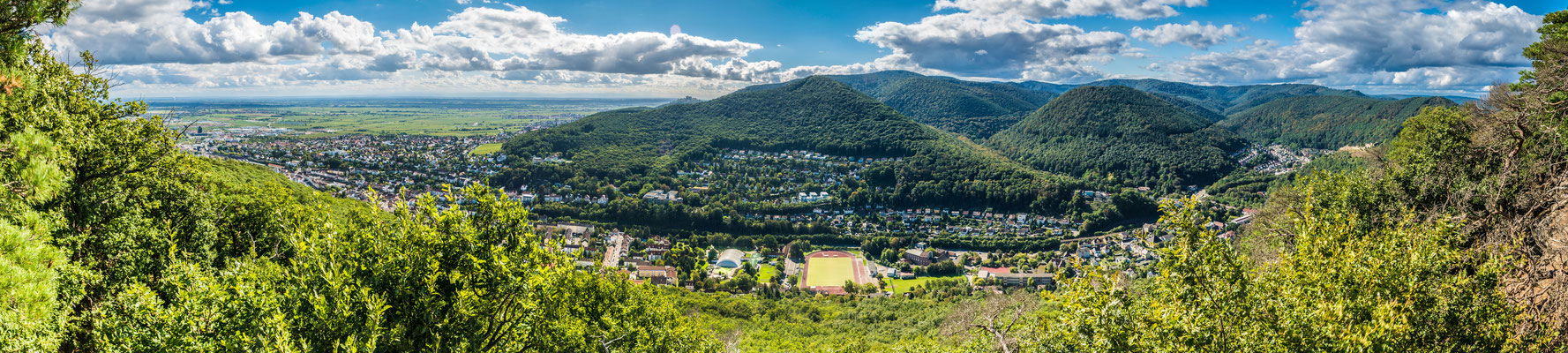 Blick nach Süden auf Neustadt und den Pfälzerwald