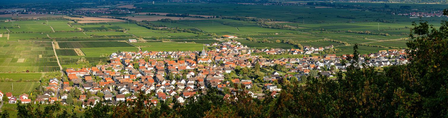 Blick auf Diedesfeld vom Hambacher Schloss
