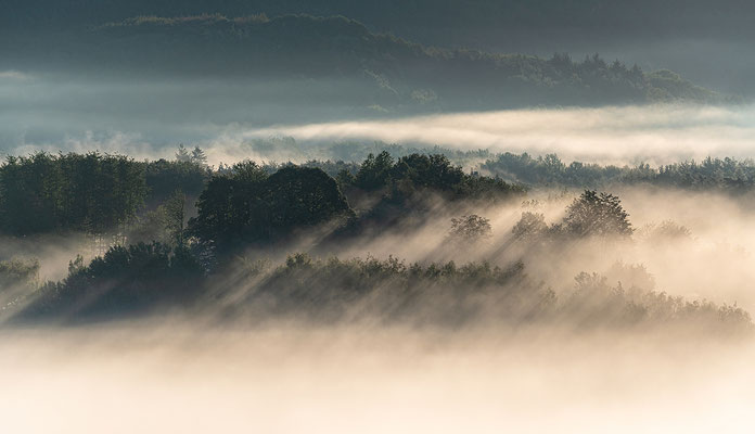Nebelmorgen an den Geiersteinen