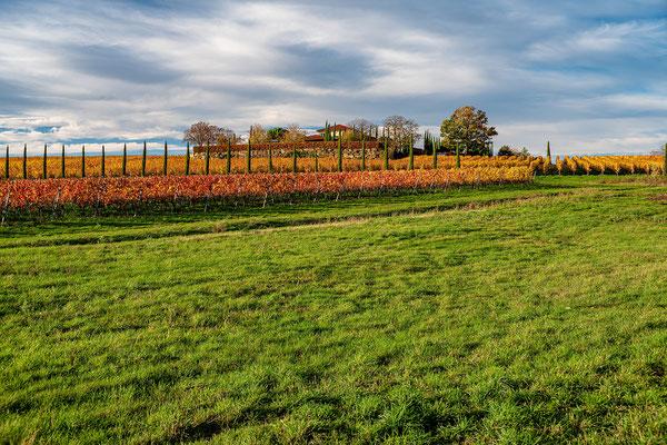 Herbststimmung in Freinsheim