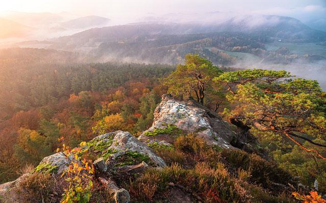 Novembermorgen am Buhlsteinpfeiler