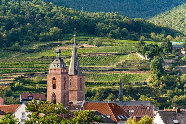 Blick auf die Stiftskirche