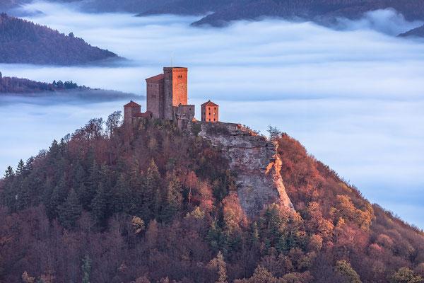 Burg Trifels über dem Herbstnebel