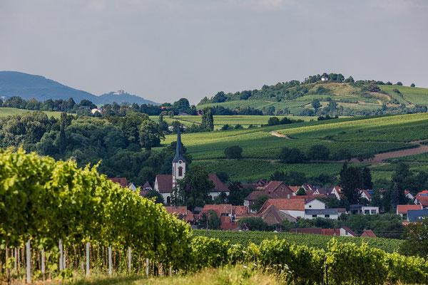 Blick auf Göcklingen, Kleine Kalmit und Hambacher Schloss