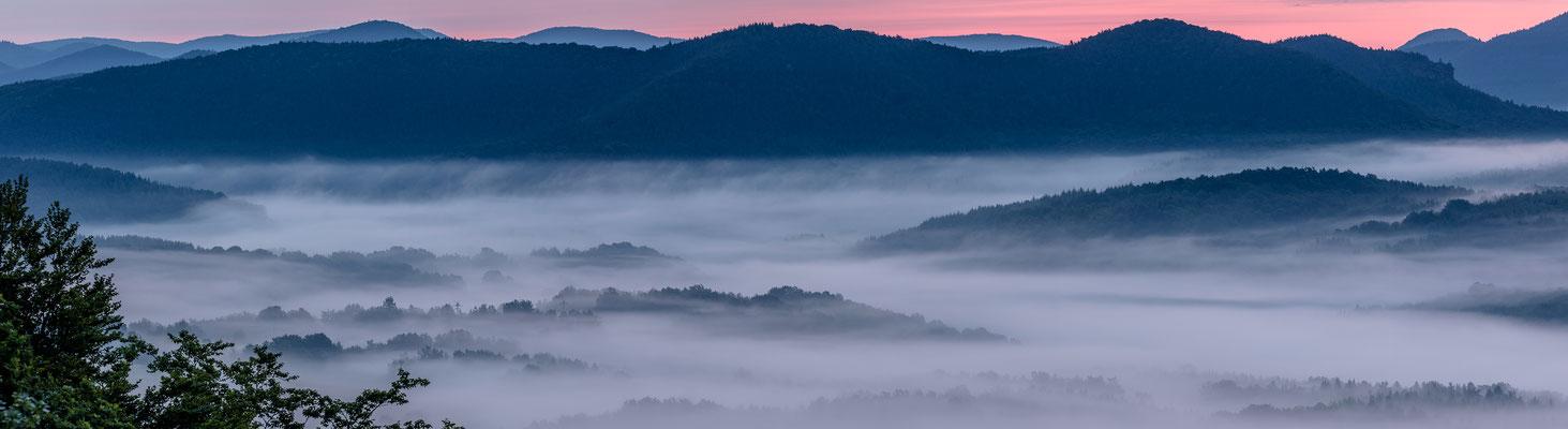 Nebliger Sommermorgen am Buhlsteinpfeiler