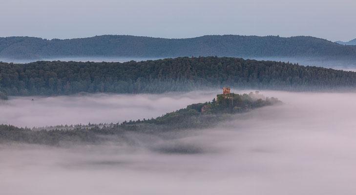 Ruine Drachenfels über dem Nebel