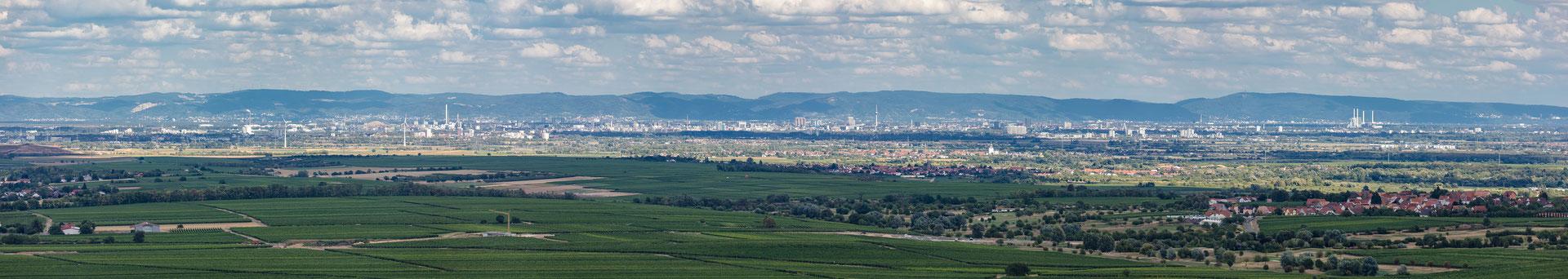 Panoramablick von der Burg Battenberg in die Rheinebene