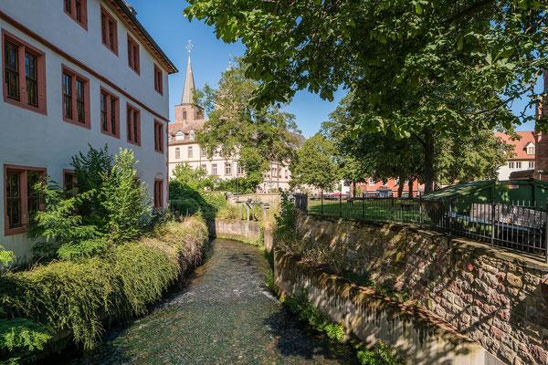 Am Neustadter Speyerbach