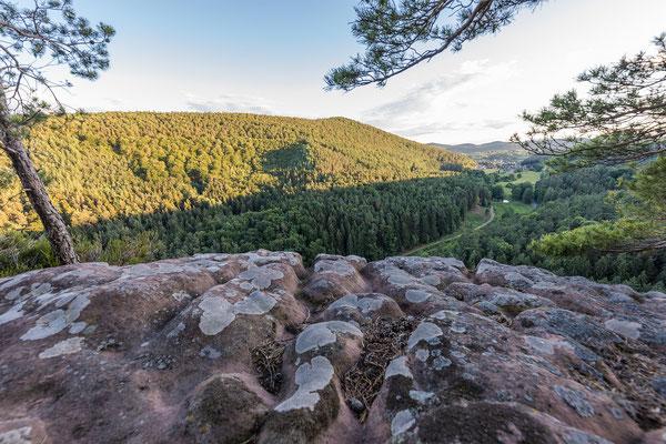 Aussicht vom Rindsberg
